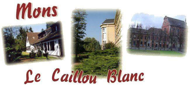 photo de Le Caillou Blanc (Chapelle des Ursulines)